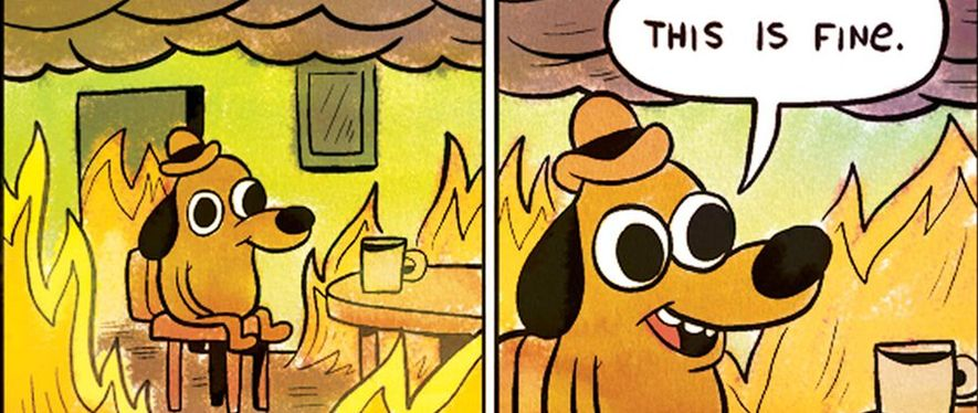 a dog trying to assure himself that everything is fine, despite sitting in a room that is engulfed in flames